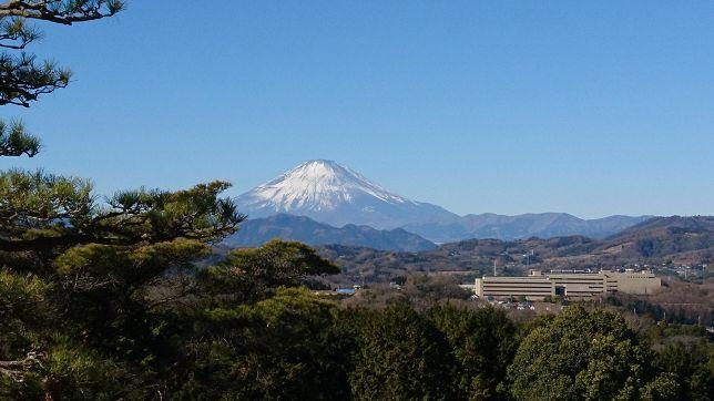 霊峰富士山を臨む平塚富士見の平塚コースで新年杯!